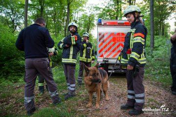 FreiwilligeFeuerwehrWiesbadenStadtmitte-Blog-Uebung-Personensuche